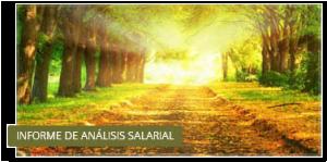 Analisis Salarial